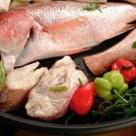 cmt_h-salomon_alimentation_poisson_cuisine_0_0